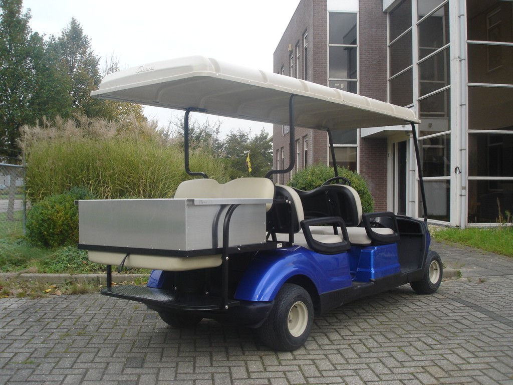 YamahaG29-Electric-6seater-flipflop-5